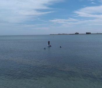 Newtons Bay